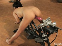 Black haired asian girl Lana Violet bends over and takes pink robotic dildo from behind