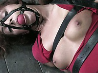 Master loves to play with hairy snatch of helpless gagged babe Sara Faye