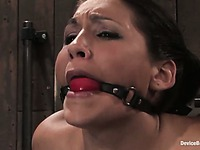 Ball gagged slave girl Jade Indica gets her tits clamped and her pussy impaled on dildo