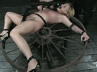 Naked weak slave girls get uses like needless toys by domina Claire Adams