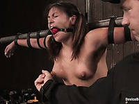 The pretty girl Thea Marie is hanging bound on the stick and getting her pussy examined.