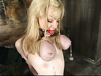 Juicy titted slave blonde Adrianna Nicole getting punished hard in the dungeon