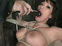 Sexy big titted asian slave milf Ava Devine gets hogtied by unmerciful man