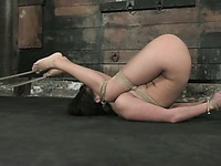 Dark haired nude slavegirl Roxy DeVille with adorable body gets abused in the middle of the dungeon