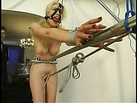 Long haired nude blonde Sadie Belle with big tits and hairless pussy in bondage