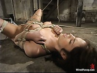 Rope tied Faith Leon with perky tits and smooth pussy gets dominated by Princess Donna