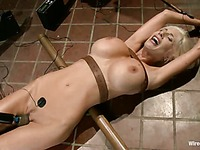 Big racked blonde bombshell Puma Swede gets humiliated by Isis Love and Princess Donna