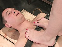 Bound nude guy Curt Wooster gets whipped and trampled by Maitresse Madeline before facesitting