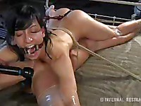 Cici Rhodes is going to show how much she loves bondage sex action and to cum hard.