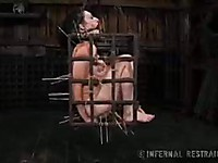Bondage action with hot Dixon Mason is not something that you want to miss  for the world.