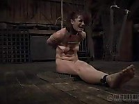 This video is going to make your day for sure. Bondage sex action with Cici Rhodes rules!