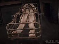Cici Rhodes in bondage and placed in a cage by her fetish master with a very dirty mind