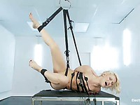 Gia DiMarco puts hot blonde Ash Hollywood in bondage and plows her snatch with strapon