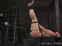 Guy puts Mia Gold in bondage and makes her beg for mercy as she cannot move