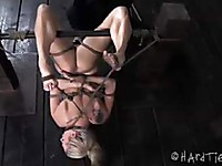 Bailey Blue in wild BDSM action with bondage and some painful toying for her snatch