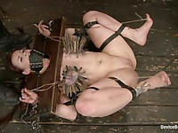 Bondage sluts Selena Kyle and Bella Rossi enjoy being hogtied while Mz Berlin whips them.