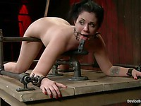 Wicked Mz Berlin teaches her bitch Andy San Dimas how to behave when tied up.