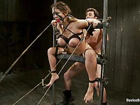 Trina Michaels's whole body is covered with pegs and ropes while she is fucked hard from behind.