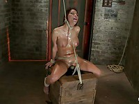 Brunette Alexa Nicole enjoys being an obedient girl while sitting tied up with a spider gag on.
