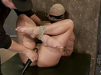Blindfolded and gagged chick Phoenix Marie can't do anything while her master teases her holes.