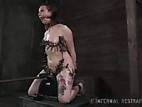 Mollie Rose gets to suffer in bondage and she is made to cum on a sybian machine