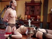 Casey Calvert assisting a bondage master while Zoey Monroe gets hardcore stimulated and used.