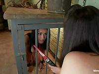 Fetish lover Ashli Ames is caged and getting her insides tenderized with sex toys by Bobbi Starr.